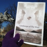 Jan Flagel_The Wolf--after basketball team_Holiday Market_Loring Park_MN